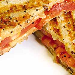 Panini Grilled Herbed Cheese Sandwich