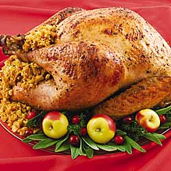 Holiday Roast Turkey