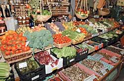 Choosing colourful fruit and veggies for fall