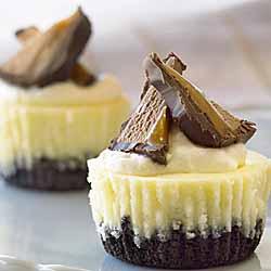 Festive Cheesecake Bites