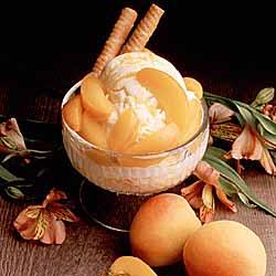 Homemade California Fresh Apricot Ice Cream