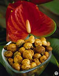 Macadamia Nuts: The *Loa* Carb Indulgence